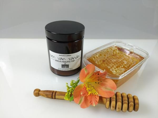 Berlin Bear's Honey Pot | Eco-Soy Candle | Berlin Edition